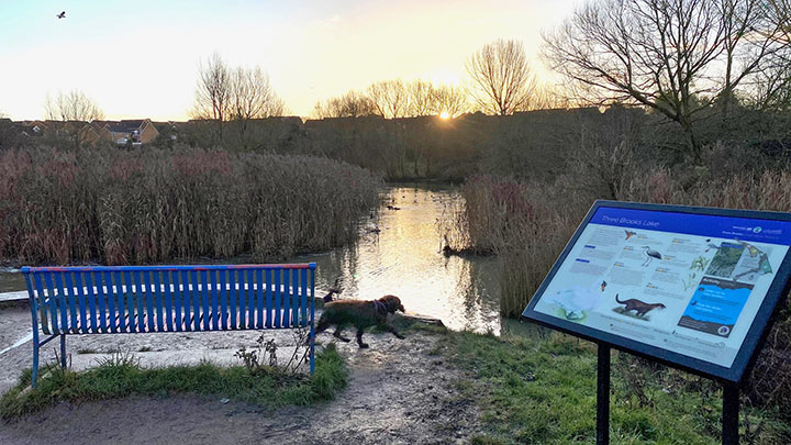 Three Brooks Lake Desilting Works | Bradley Stoke Town Council